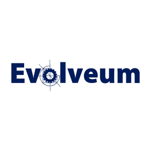 Evolveum | Core Networks